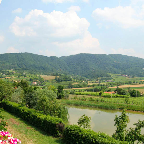 Strada dei vini dei Colli Berici